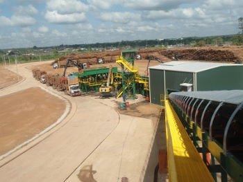 AMCEL - AMAPÁ FORESTRY AND PULP S A